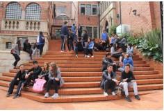 Colegio de Estudios Superiores de Administración
