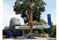Foto Universidad Santo Tomás - Seccional Bucaramanga Bucaramanga Centro